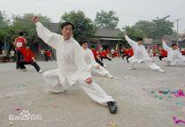 Maïtre Wang Xi An - Chen Jia Gou 2