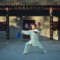Maïtre Wang Xi An - Chen Jia Gou 3